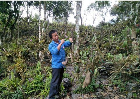 Lao Cai: Trai Mong vao rung trong bat ngan lan quy