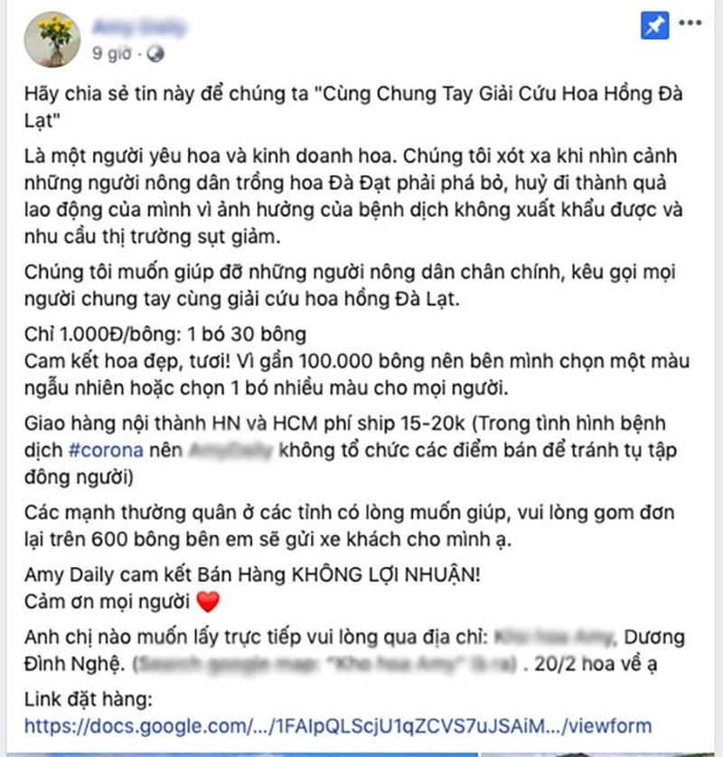 """Hong Da Lat chi 1.000 dong/bong: Chi em huong ung """"giai cuu""""-Hinh-2"""