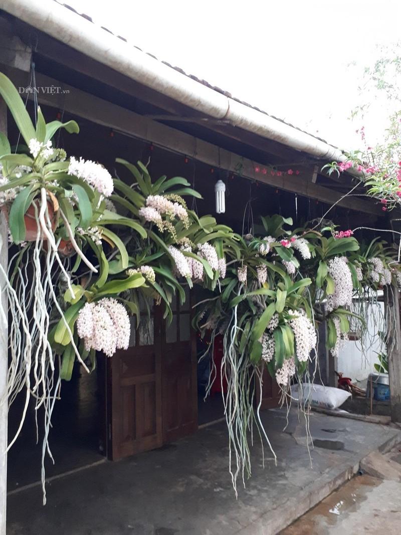 Them nha treo toan hoa lan rung quy hiem cua trai 9X tinh Dak Nong-Hinh-2