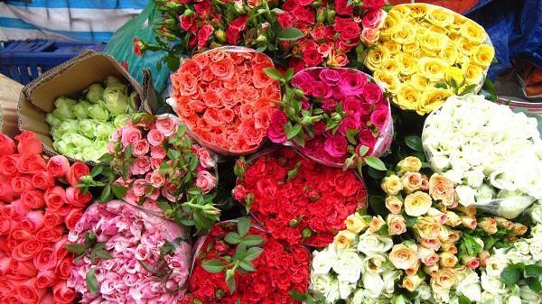 Meo chon hoa tuoi lau, moi phu nu deu nen biet-Hinh-2