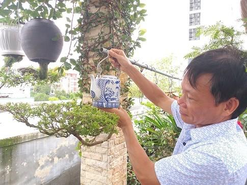 Ngam dan bonsai moc nguoc cuc doc la cua lao gan xu Quang-Hinh-14