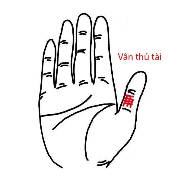 "Phu nu so huu 3 van tay ""hut vang"" ca doi nam tren tien-Hinh-2"