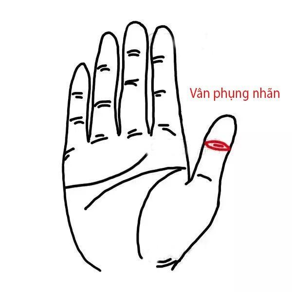 "Phu nu so huu 3 van tay ""hut vang"" ca doi nam tren tien-Hinh-3"