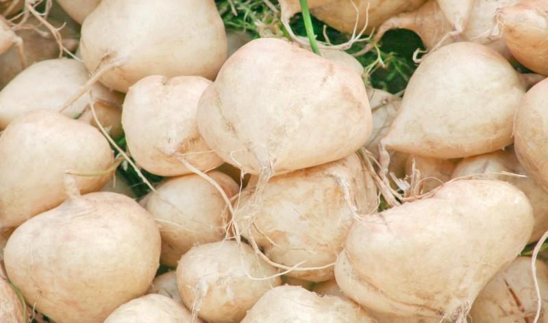 10 loai trai cay tang suc de khang trong mua nang nong-Hinh-7