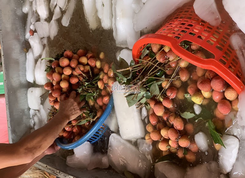 Het cach ly, 45 thuong lai Trung Quoc gom ngan tan vai thieu-Hinh-5