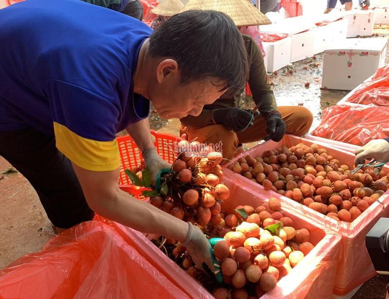 Het cach ly, 45 thuong lai Trung Quoc gom ngan tan vai thieu-Hinh-6