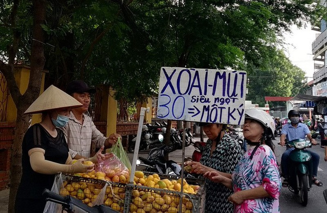 Hon 700 tan xoai mini Trung Quoc do bo cho Sai Gon