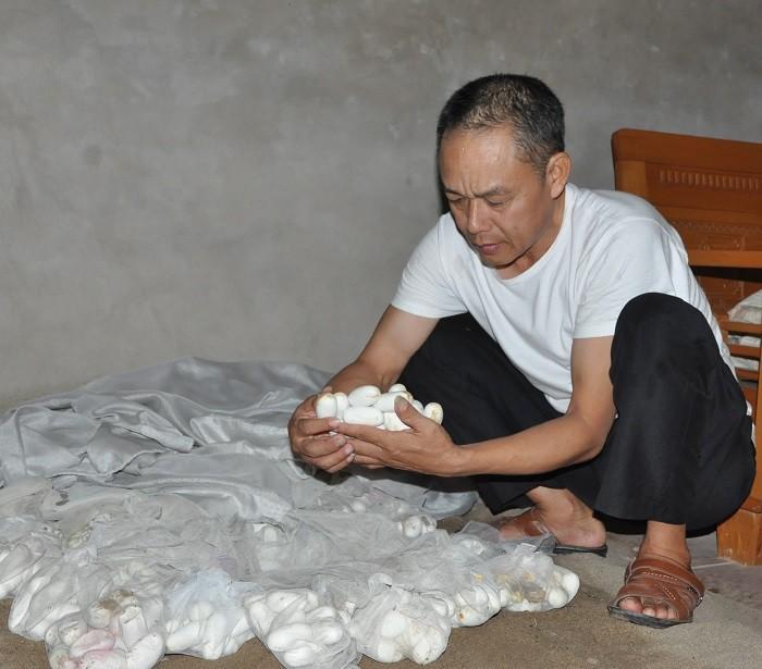 Ngoi lang ty phu nuoi mang xa noi tieng, gio ngap trong dong no-Hinh-2