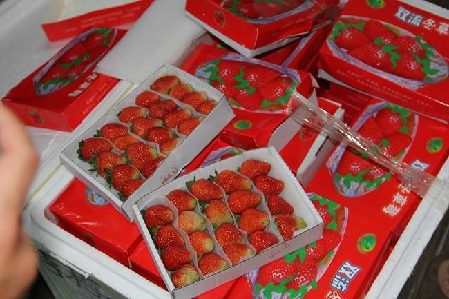 3,5 tan dau nghi cua Trung Quoc 'bay' vao Da Lat-Hinh-4