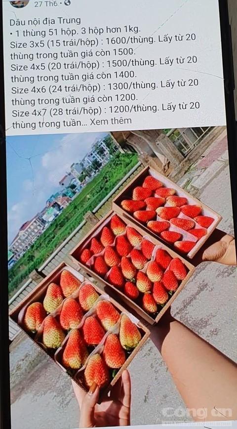 Dau tay Trung Quoc nhap canh 22 ngay van tuoi nhu vua hai-Hinh-4