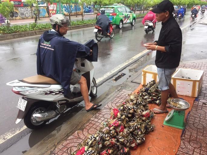 Cua Ca Mau 50.000 dong/3 con ban day duong, 'bao an'-Hinh-3