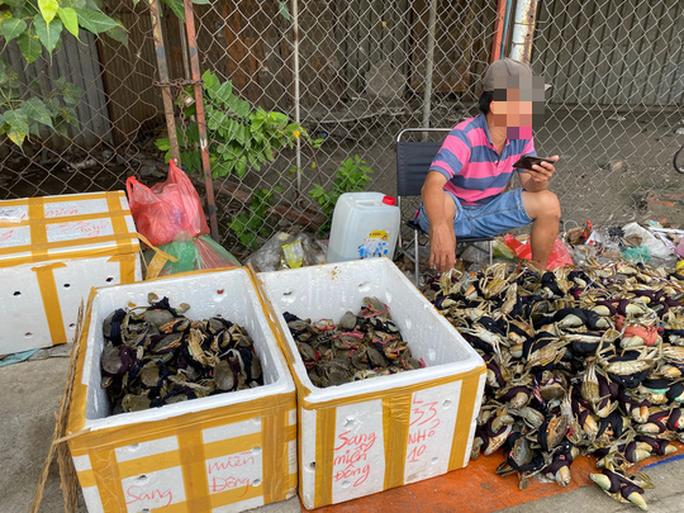 Cua Ca Mau 50.000 dong/3 con ban day duong, 'bao an'