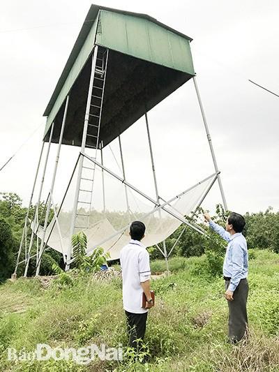 Lam chuong nuoi doi hung phan ban