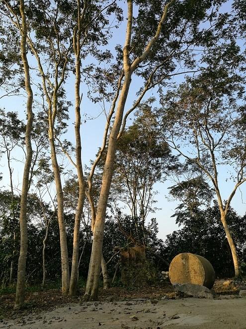 Kho bau nghin ty duoi thung lung cua lao nong Tuyen Quang-Hinh-2