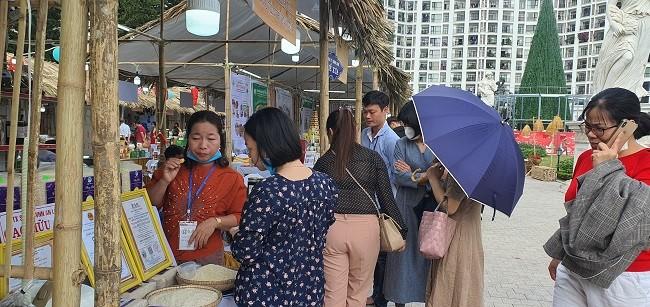 Bi ti hon co gia hang tram nghin dong/kg hut khach Ha thanh-Hinh-5