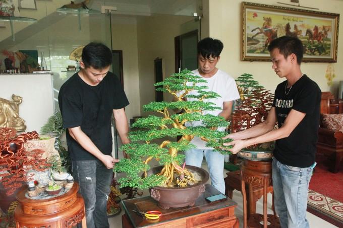 Bien day dong thanh tuyet pham bonsai-Hinh-10