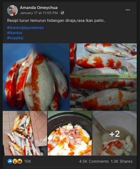 Co gai Malaysia bi chi trich vi nau sup dan ca Koi da chet-Hinh-2