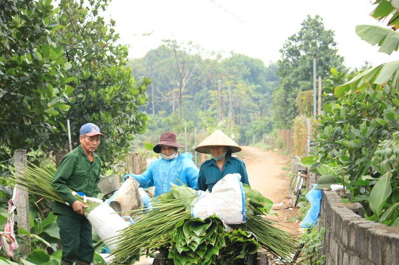 Ngoi lang co 400 nam trong la dong o Ha Noi-Hinh-3