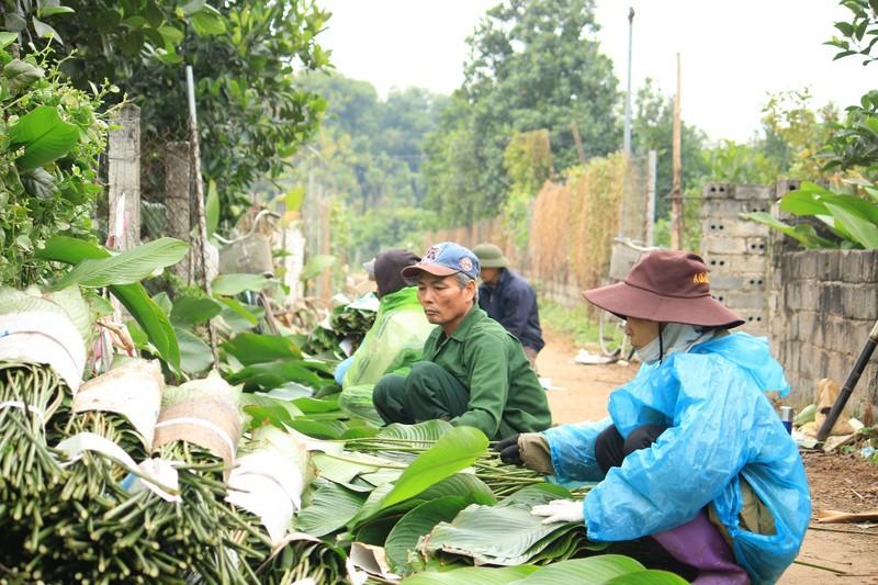 Ngoi lang co 400 nam trong la dong o Ha Noi