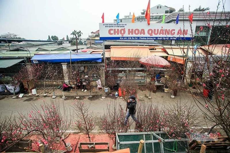 Lang hoa Ha Noi dang ngoi tren dong lua vi dich COVID-19-Hinh-11