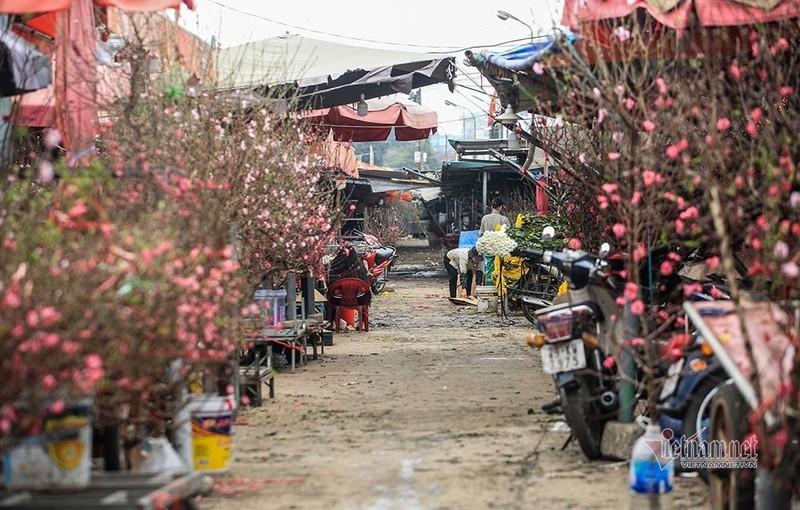 Lang hoa Ha Noi dang ngoi tren dong lua vi dich COVID-19-Hinh-12