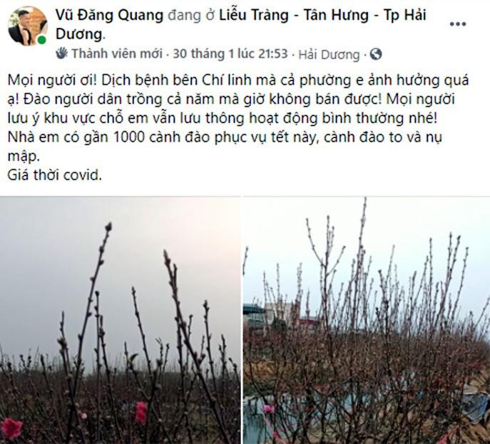 Lang dao Hai Duong nguy khon, rao ban gap 1.000 goc