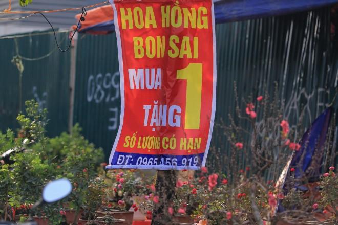 Quat, dao sale sap san van vang bong nguoi mua-Hinh-10