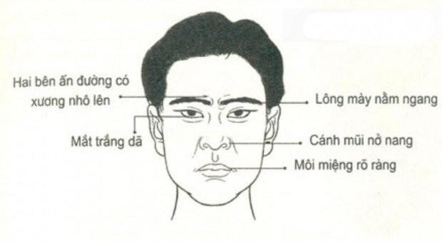 Trông mặt bắt hình dong: kiểu 1 tài ba xuất chúng, kiểu 2 bất tài
