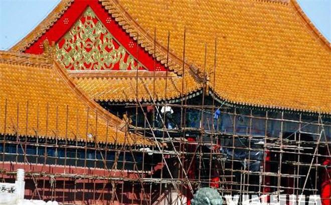 Tai sao Tu Cam Thanh suot 600 nam khong he co chim dau tren mai-Hinh-3