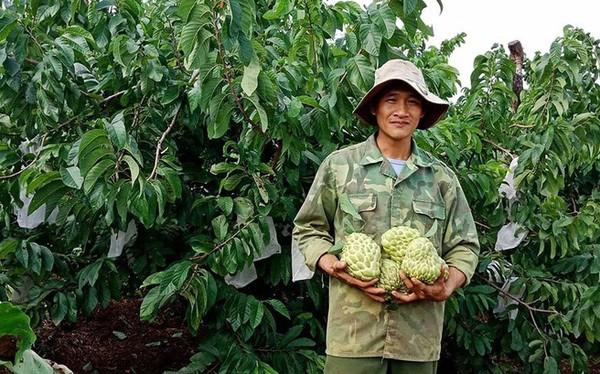 100.000 dong mot qua mang cau hoang hau Thai Lan khong lo