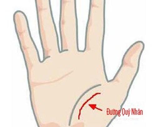 Ngua long ban tay, thay co dac diem nay sung suong den gia-Hinh-3