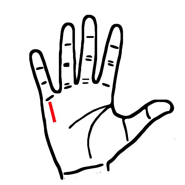 Ngua long ban tay, thay co dac diem nay sung suong den gia-Hinh-4