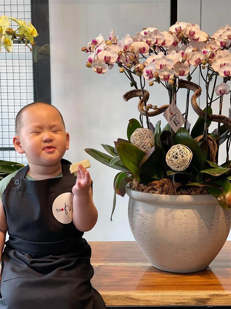 Loat anh an uong cuc yeu cua con trai Tra My Idol-Hinh-5