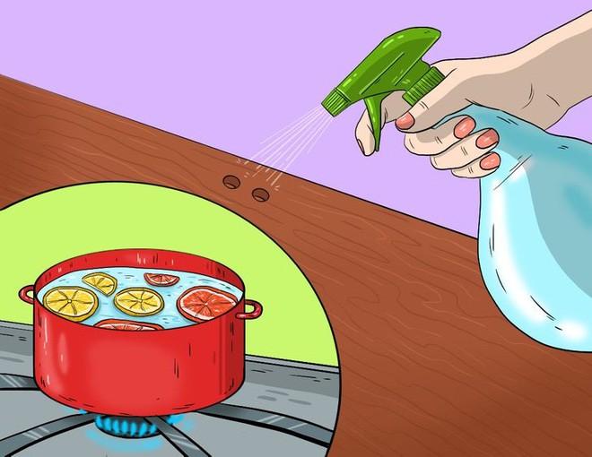 Meo giup diet tru 10 loai con trung nguy hiem nay trong nha-Hinh-5