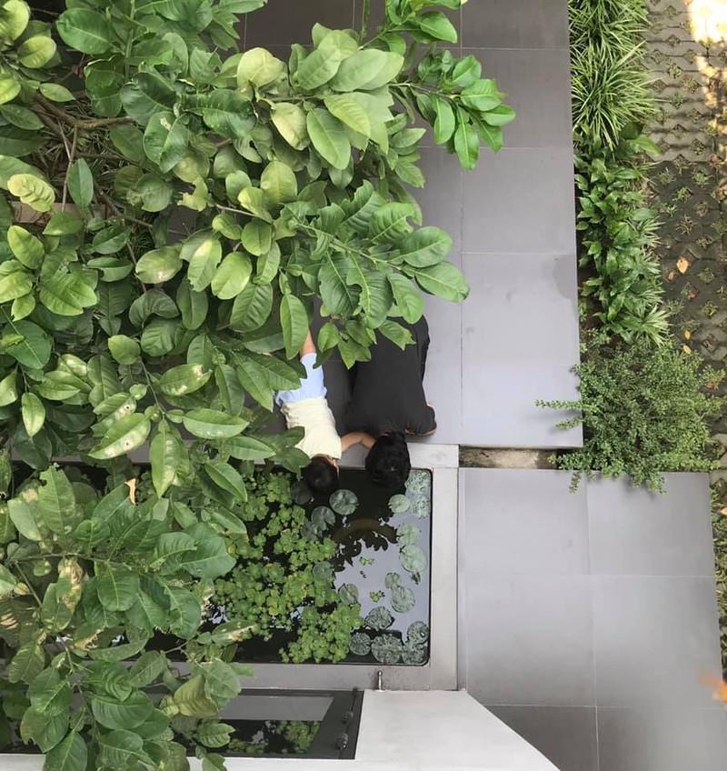 Ngan ngo truoc khu vuon bi mat trong ngoi nha mau trang o Hai Phong-Hinh-10