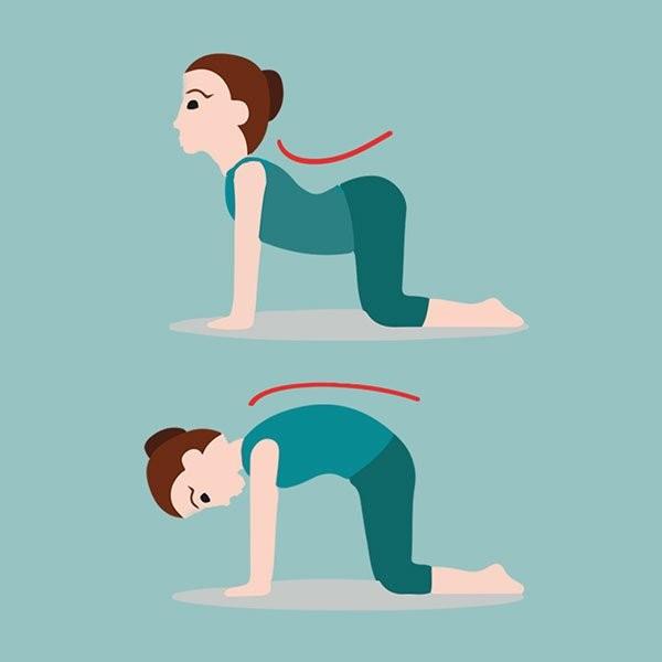 5 bai yoga don gian rut mo bung, bop eo nho xiu-Hinh-2
