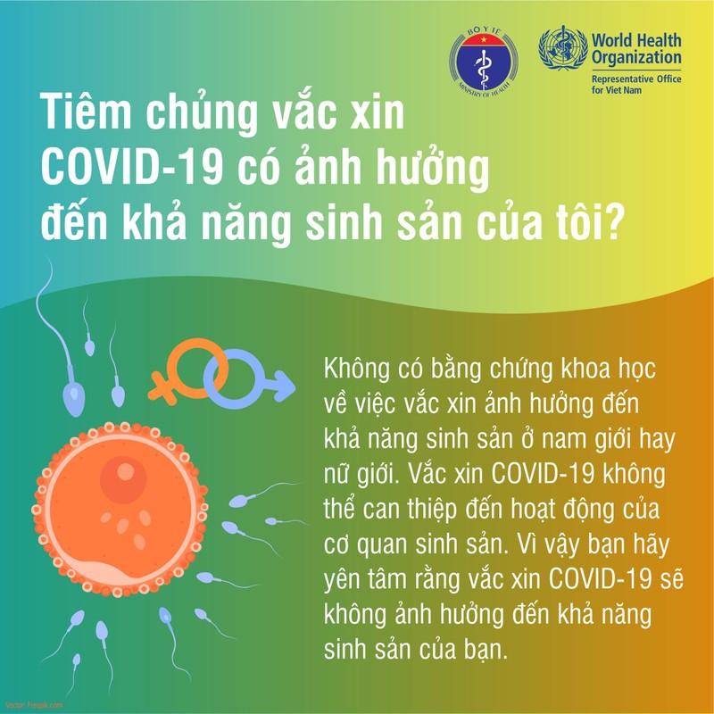 Tiem vac xin phong Covid-19 co anh huong den kha nang sinh san?