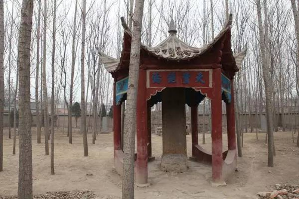 Ly do Tao Phi tha mang cho Tao Thuc du biet day la 1 moi hoa-Hinh-2