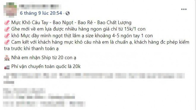 Muc kho gia re, chi 200.000 dong/kg loai muc to bang ca ban tay