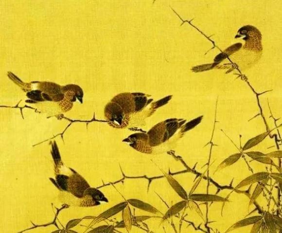 Dan ong hay dan ba sinh thang am lich nay, duong doi suon se-Hinh-3