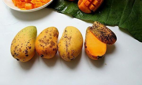 3 loai trai cay nam trong danh sach den co the nuoi duong te bao la-Hinh-2
