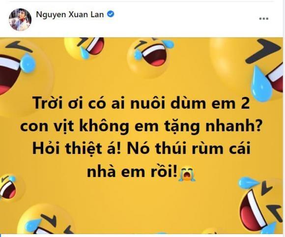Xuan Lan am anh vi mui thoi khi chong nuoi vit trong can ho-Hinh-3