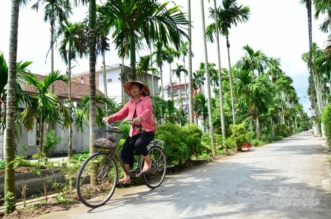 Loai cay o Viet Nam an mot nam muoi, tra mot phan vang-Hinh-2