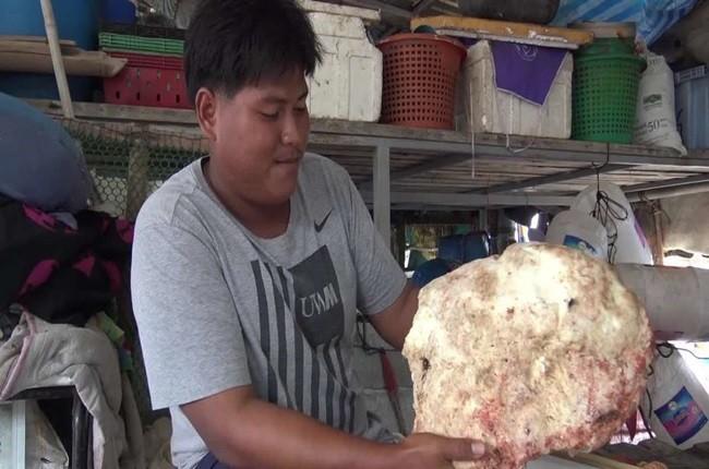 Khoi long dien huong hang ty dong la chat thai cua con vat nay