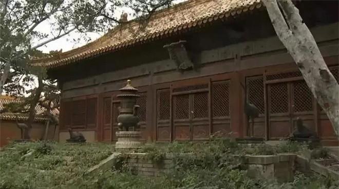 Giai ma 3 dien bi an nhat Tu Cam Thanh chua mot lan mo cua-Hinh-2