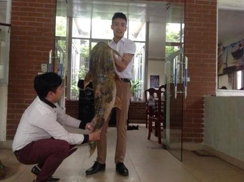 """Can canh ca chien """"khung"""" gia chuc trieu dong o Ha Noi"""