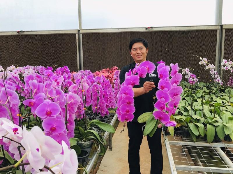 Can Tet Tan Suu: Hoa tuoi Trung Quoc lan at hoa Viet-Hinh-3