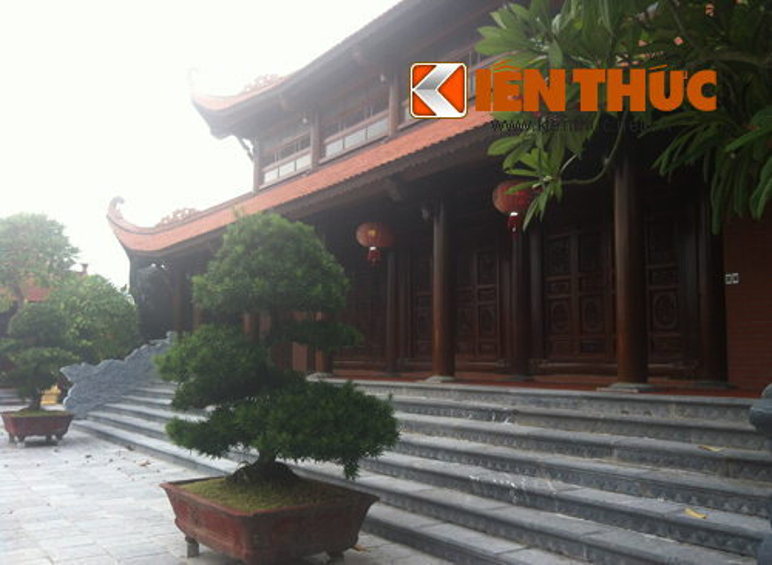 Dai gia Hung Yen doc tram ty xay nha tho khung-Hinh-14