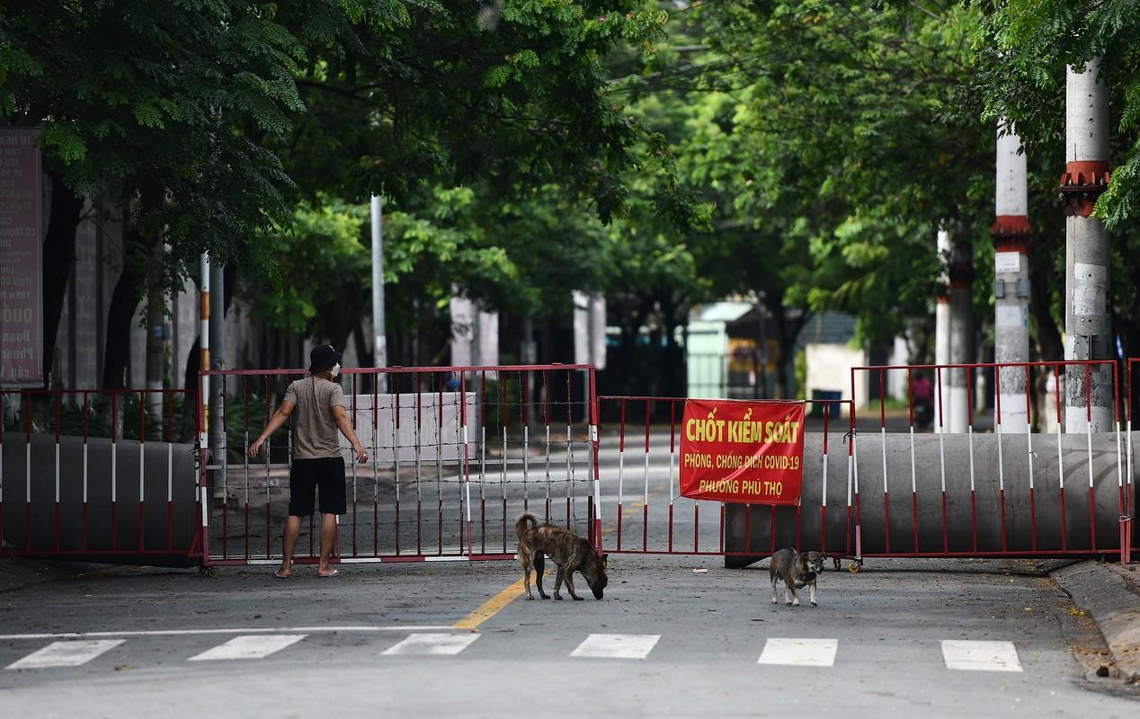 Ngay dau ap dung 'the thong hanh vaccine' TP Thu Dau Mot vang ve-Hinh-7