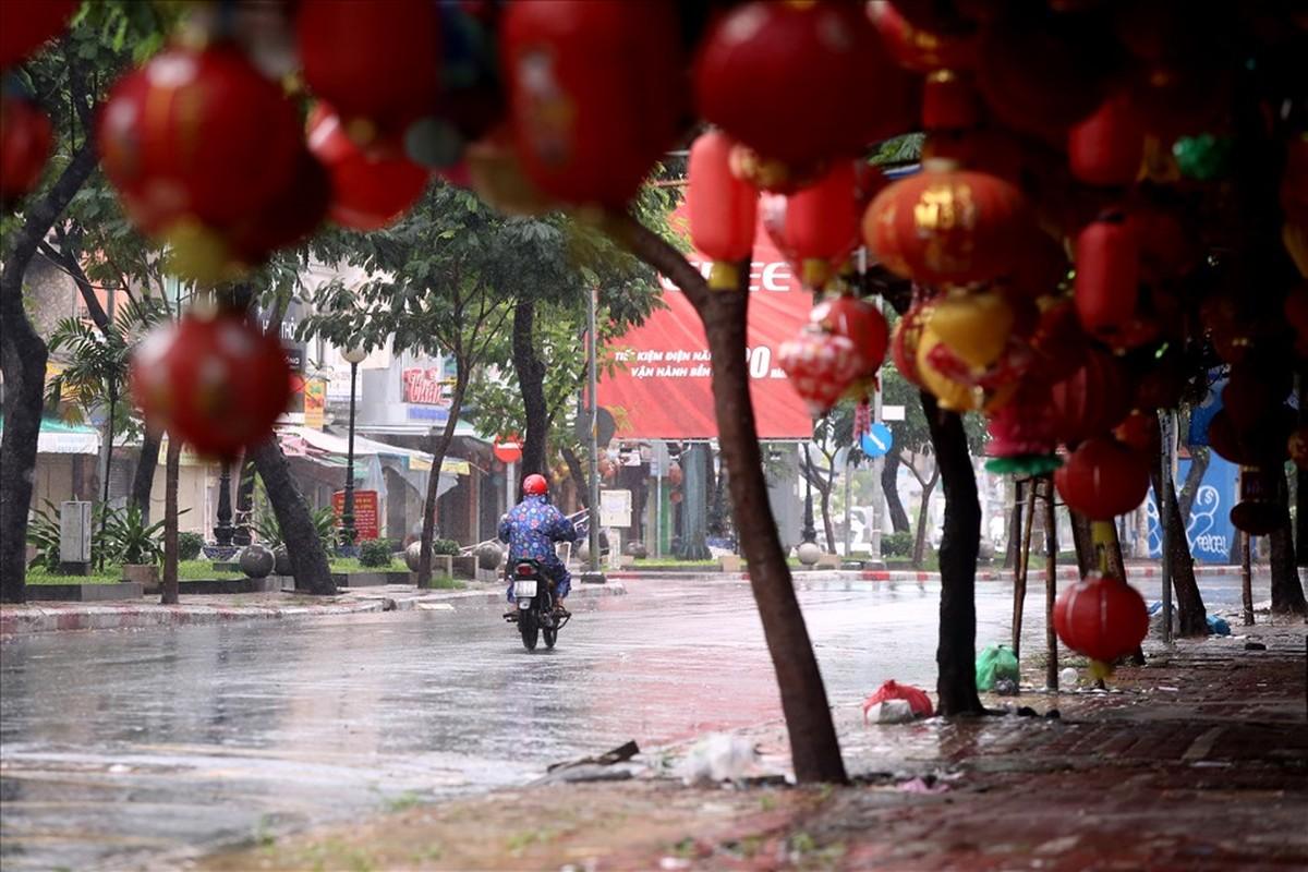 Pho long den lon nhat TPHCM diu hiu truoc Trung thu-Hinh-2